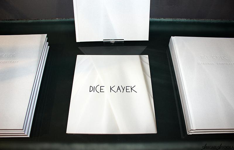DICE KAYEK INSTALLATION LAUNCH